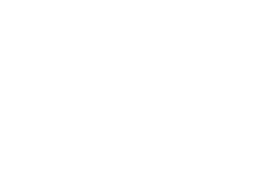 Houndstooth-Prudence-Holdings
